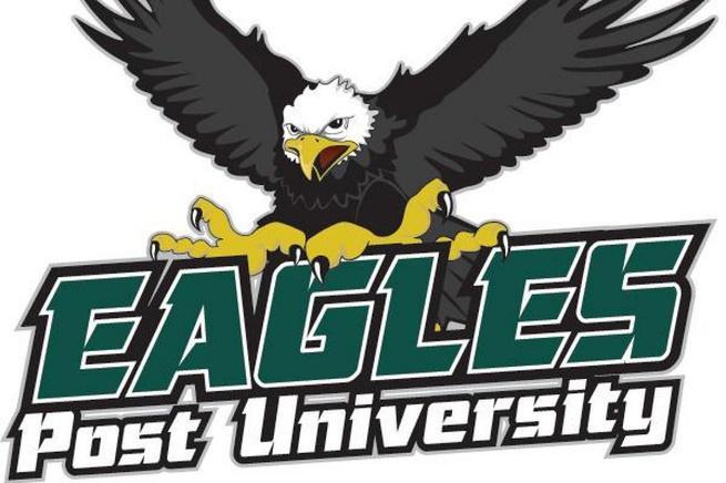 Image result for Post University Hockey Logo