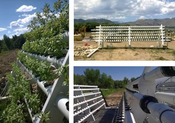 Apex Farm в действии