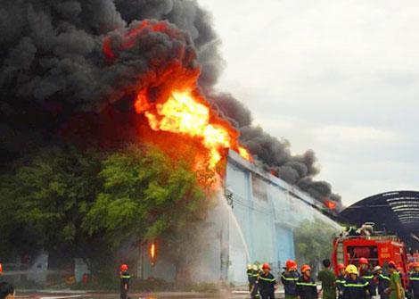 hợp đồng bảo hiểm cháy nổ bắt buộc.jpg
