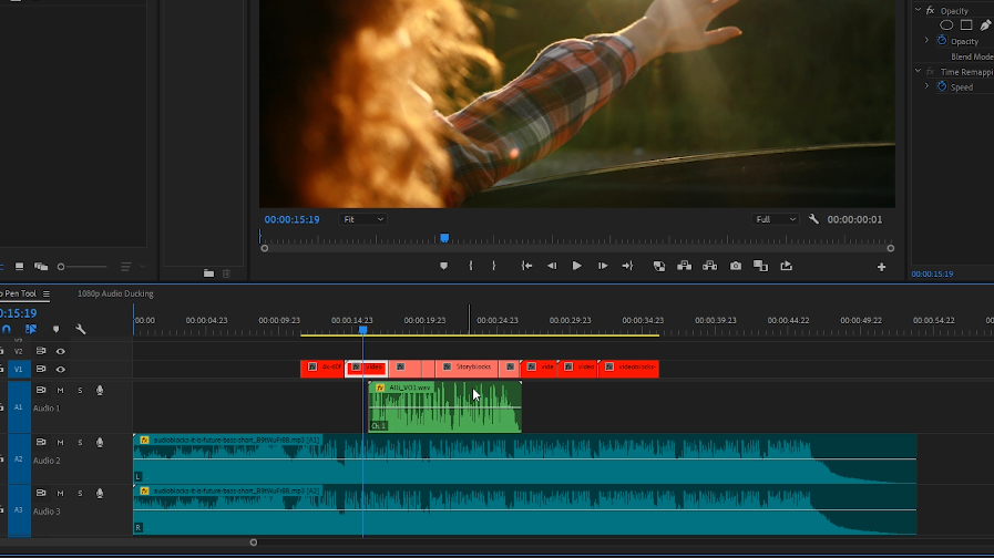 Premiere Pro - Audio Track Playing