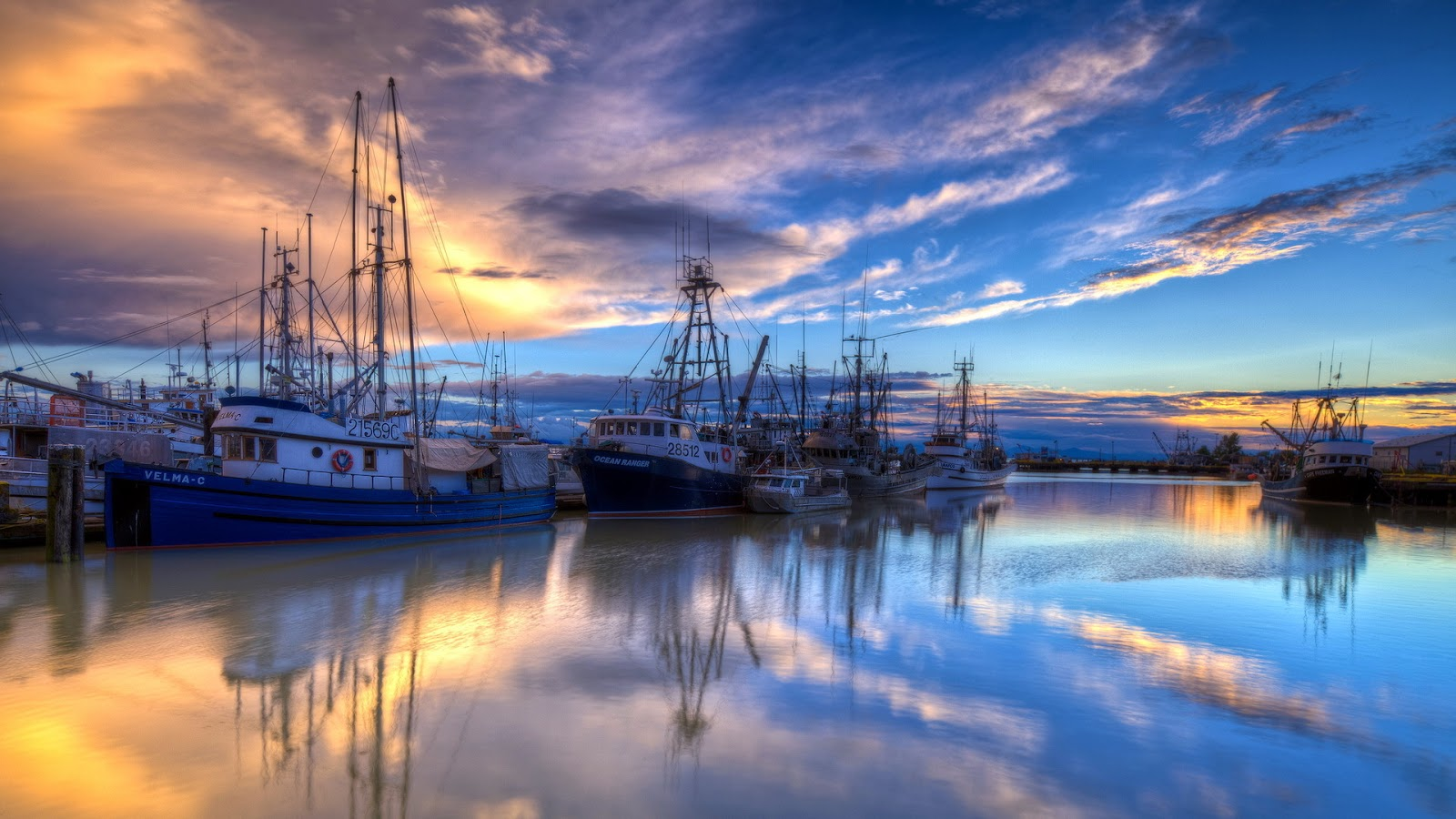 boats in the harbor.jpg