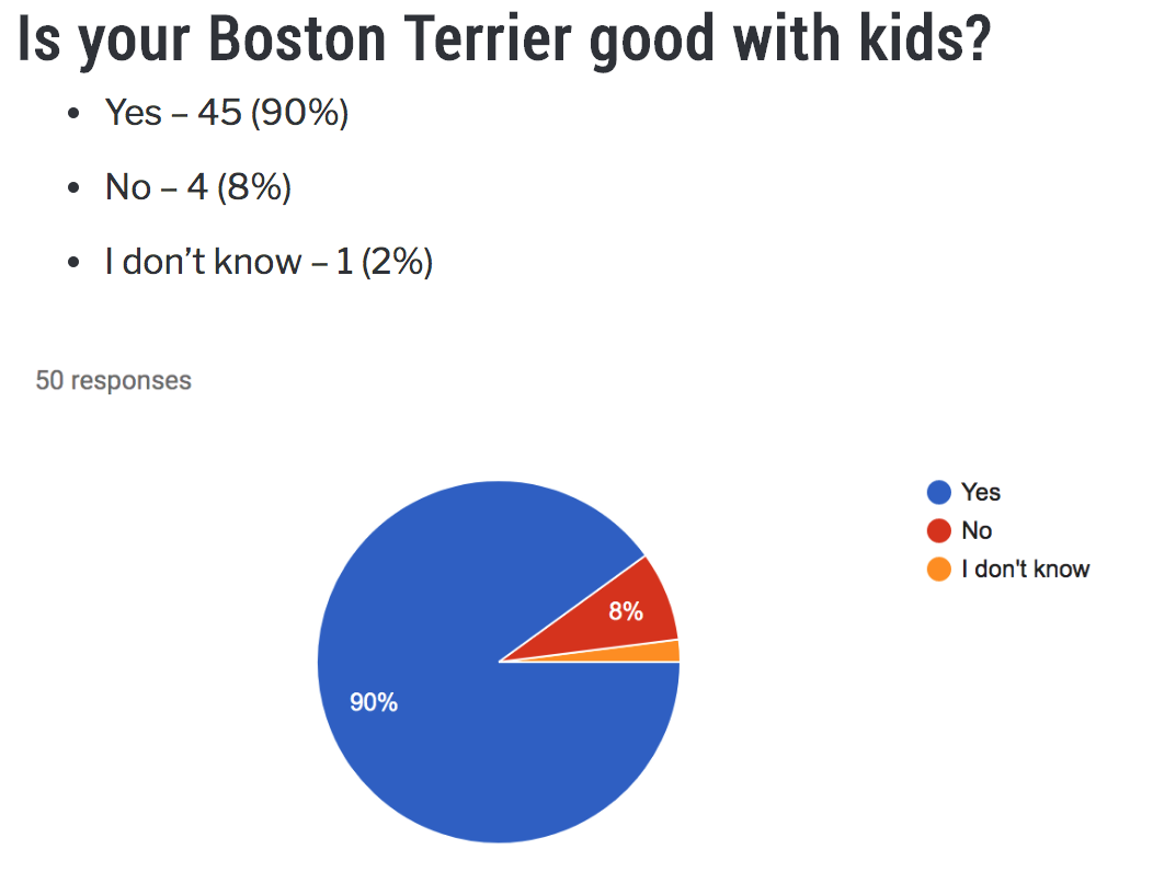 Are Boston Terriers Good With Kids? Boston Terrier Society