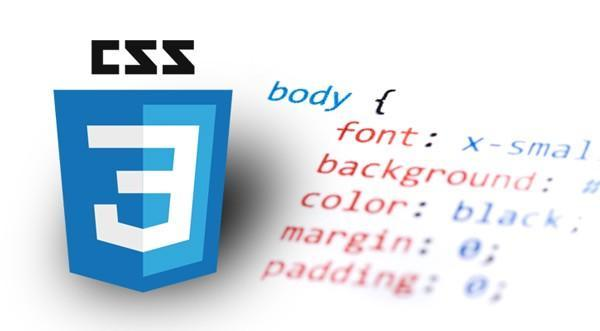 Top 5 Frontend Programming Language Higher Growth 2025 css