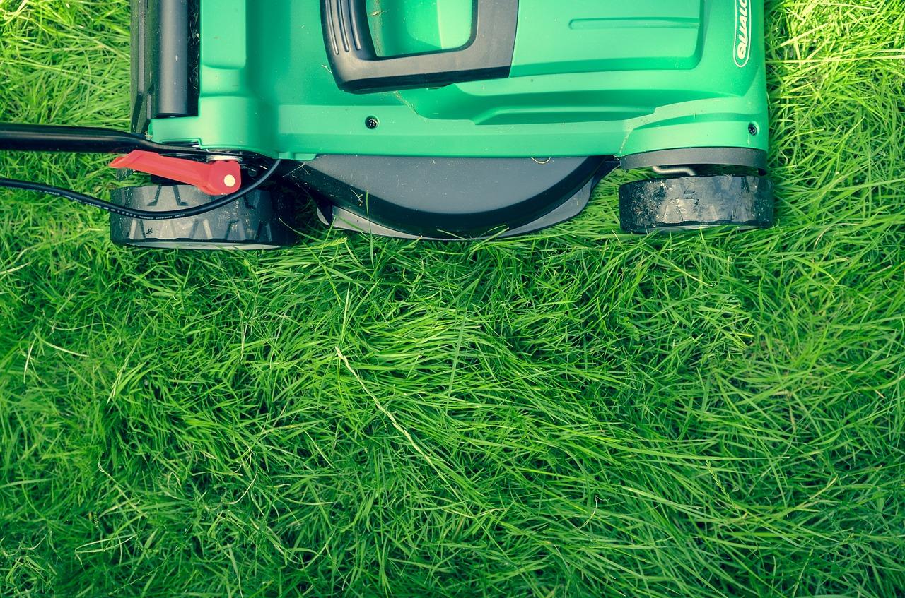 grass-1840929_1280.jpg