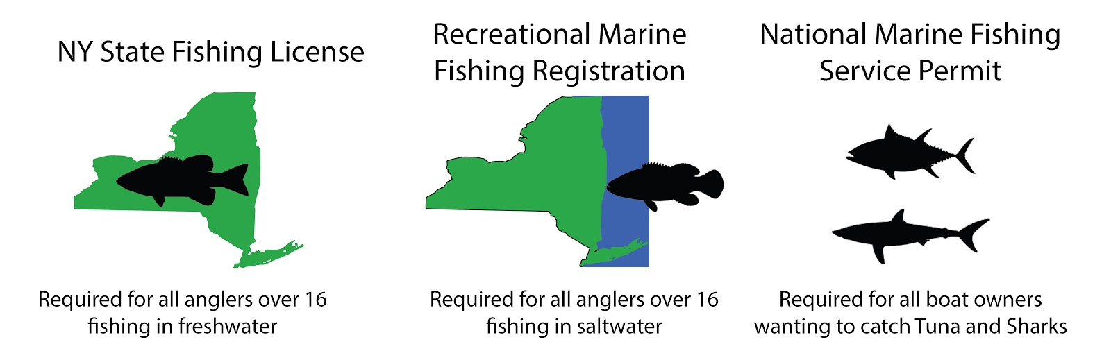 A graphic displaying all the license requirements for fishing in New York, including freshwater licenses, saltwater permits, and who must have them.