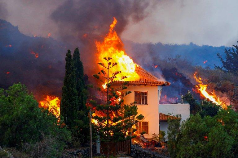Vista de bosque con fuego  Descripción generada automáticamente con confianza media