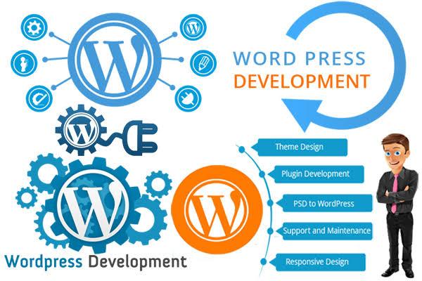 Why choose WordPress for web design and development? WordPress design experts