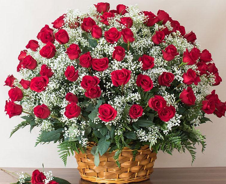 Ảnh có chứa cây, hoa, tường, bó hoa  Mô tả được tạo tự động