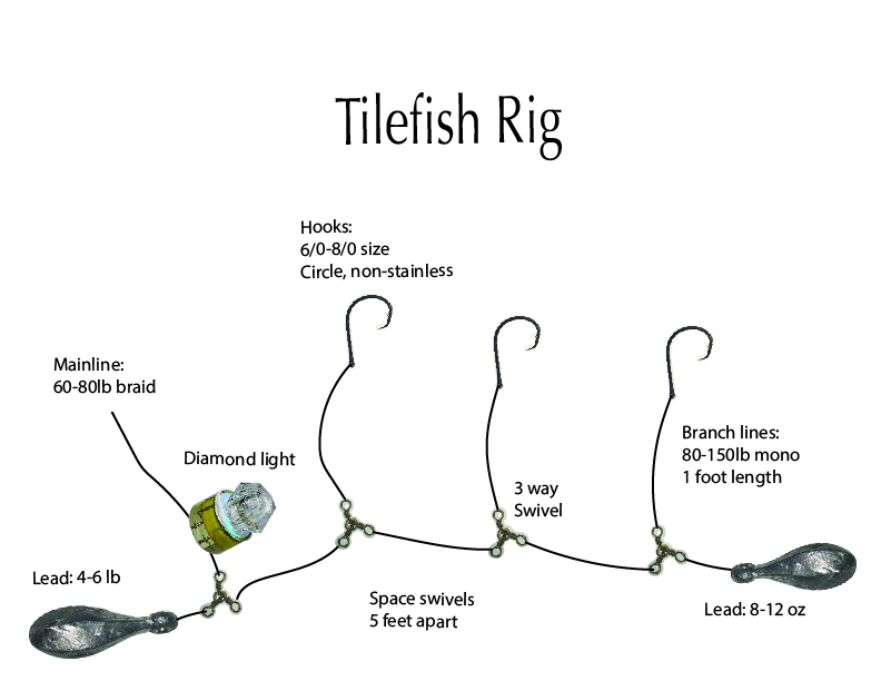 tilefish deep drop rig