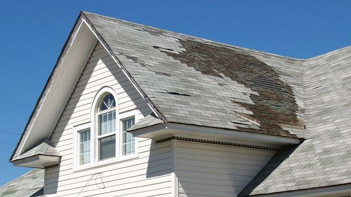 Should You Buy a House With Roof Damage? | Sherlock Homes & Mold Inspection