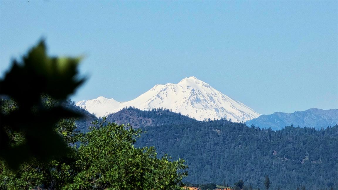 Raley's Shasta 3.jpg