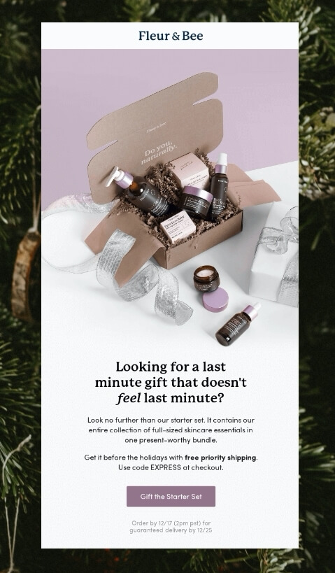 christmas gift guide email campaign