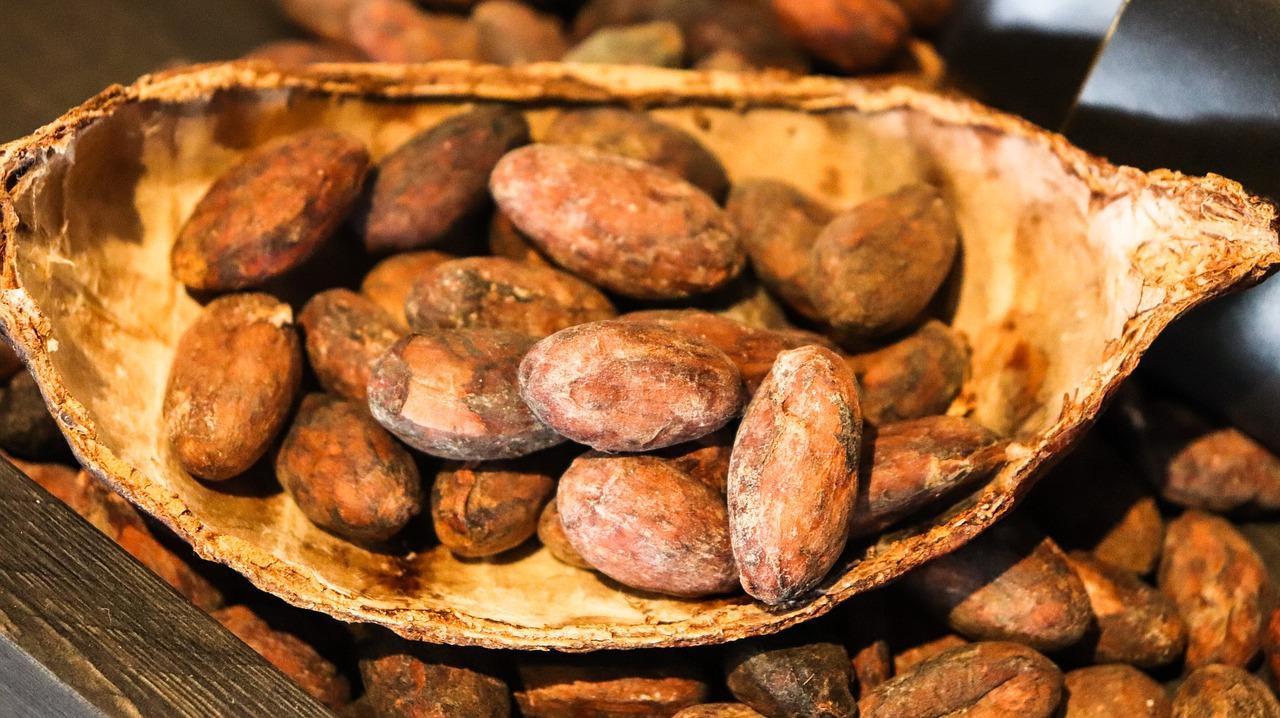kakaooad alusel