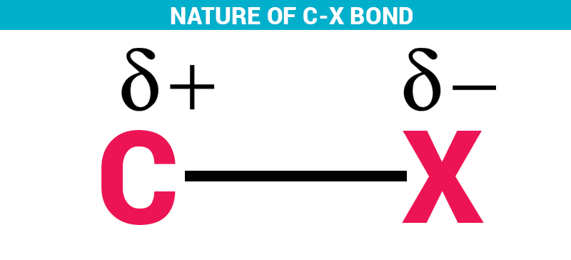 Nature of C-X bond