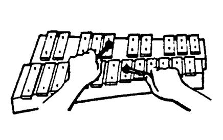 Xylophone - Irish primary music curriculum