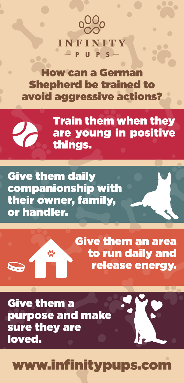 How can a German shepherd be trained to avoid aggressive actions?