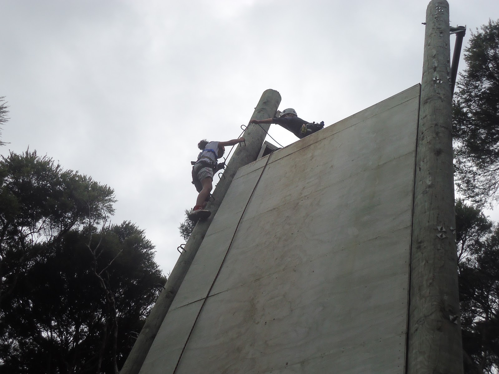 Image result for abseiling kawau island