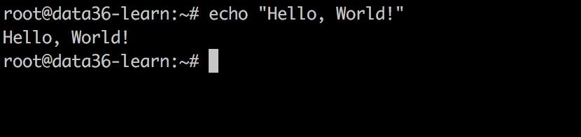 data coding bash hello world
