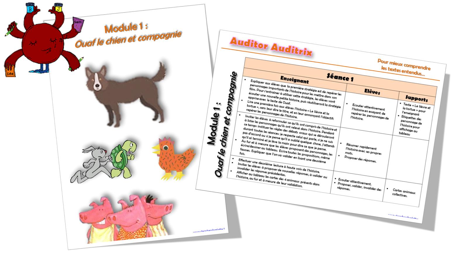Visuel Auditor Auditrix Module 1.png