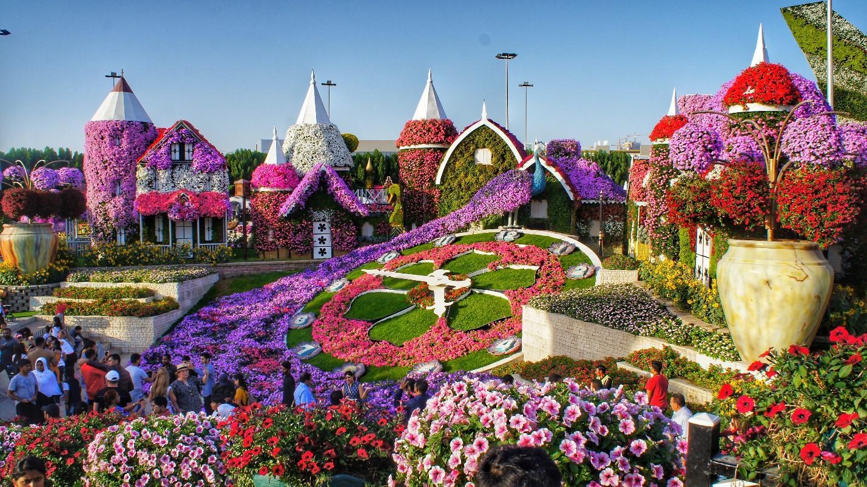 C:\Users\Shrutika Yadav\Downloads\miracle-garden.jpg