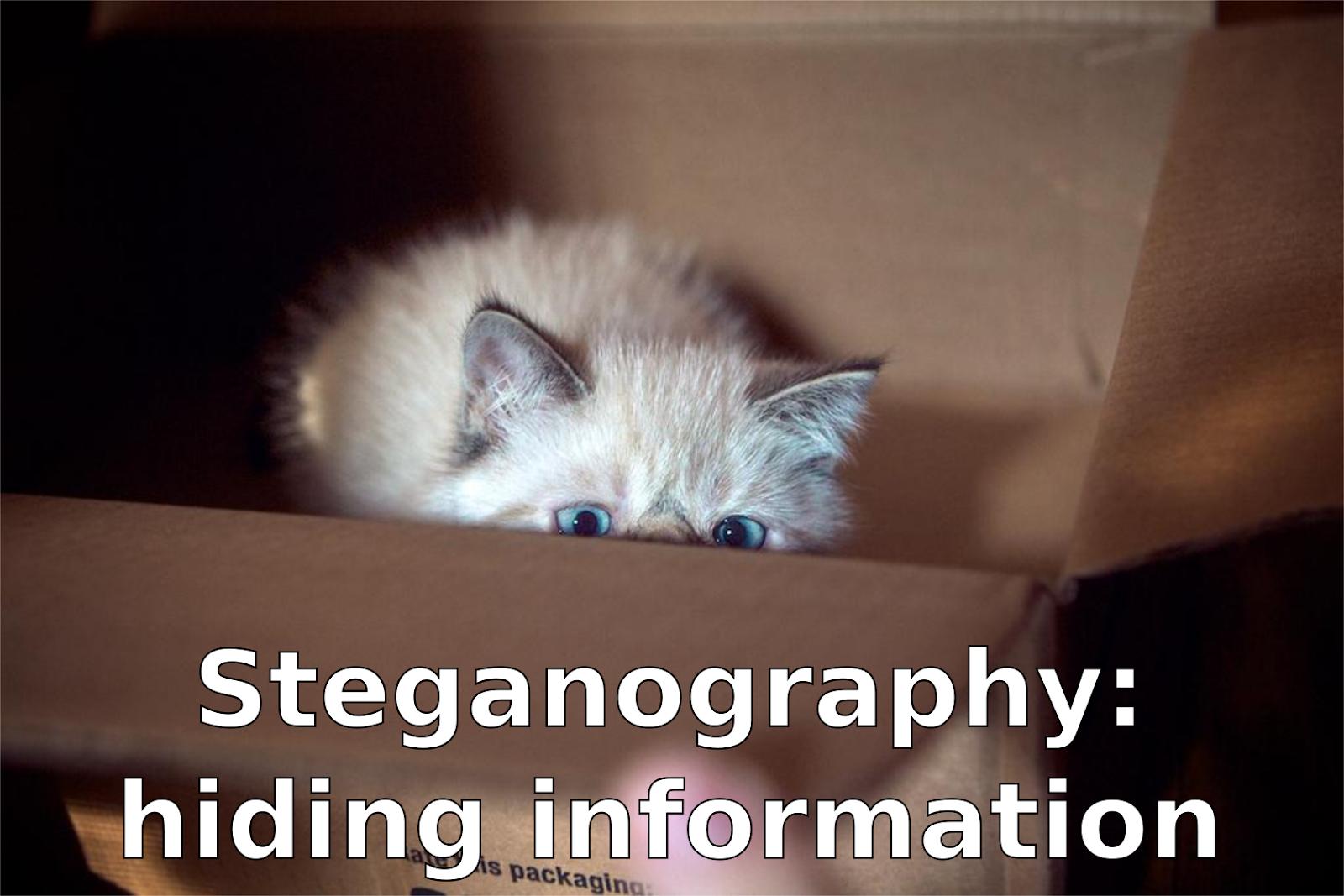 steganography.png