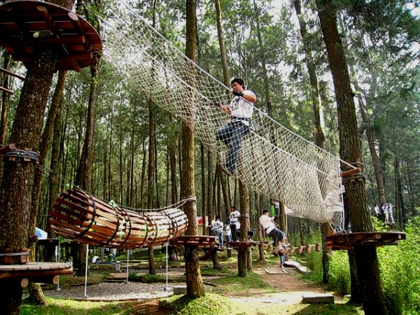 wisata alam kopeng treetop adventure park
