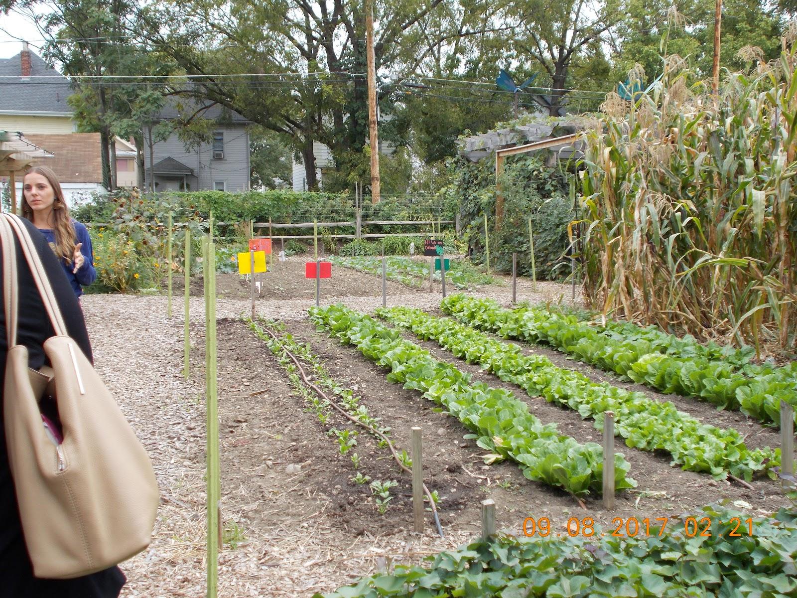 columbus garden.JPG