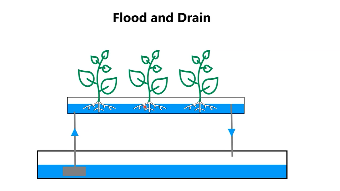 flood and drain diagram
