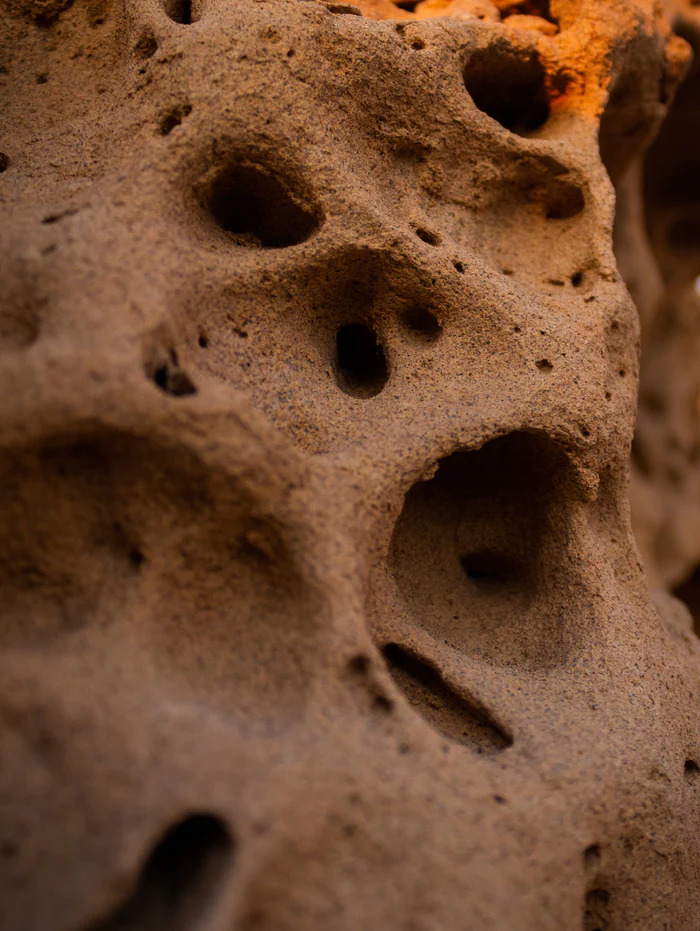 Trypophobia A Complete Guide