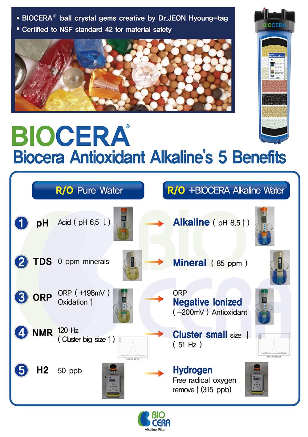 biocerabenefits.jpg