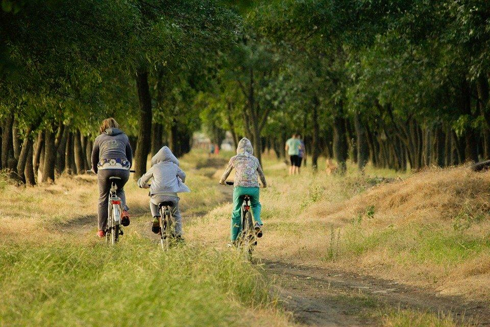 Family, Vacation, Kids, Forest, Sports, Bike
