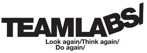 Logo Teamlabs