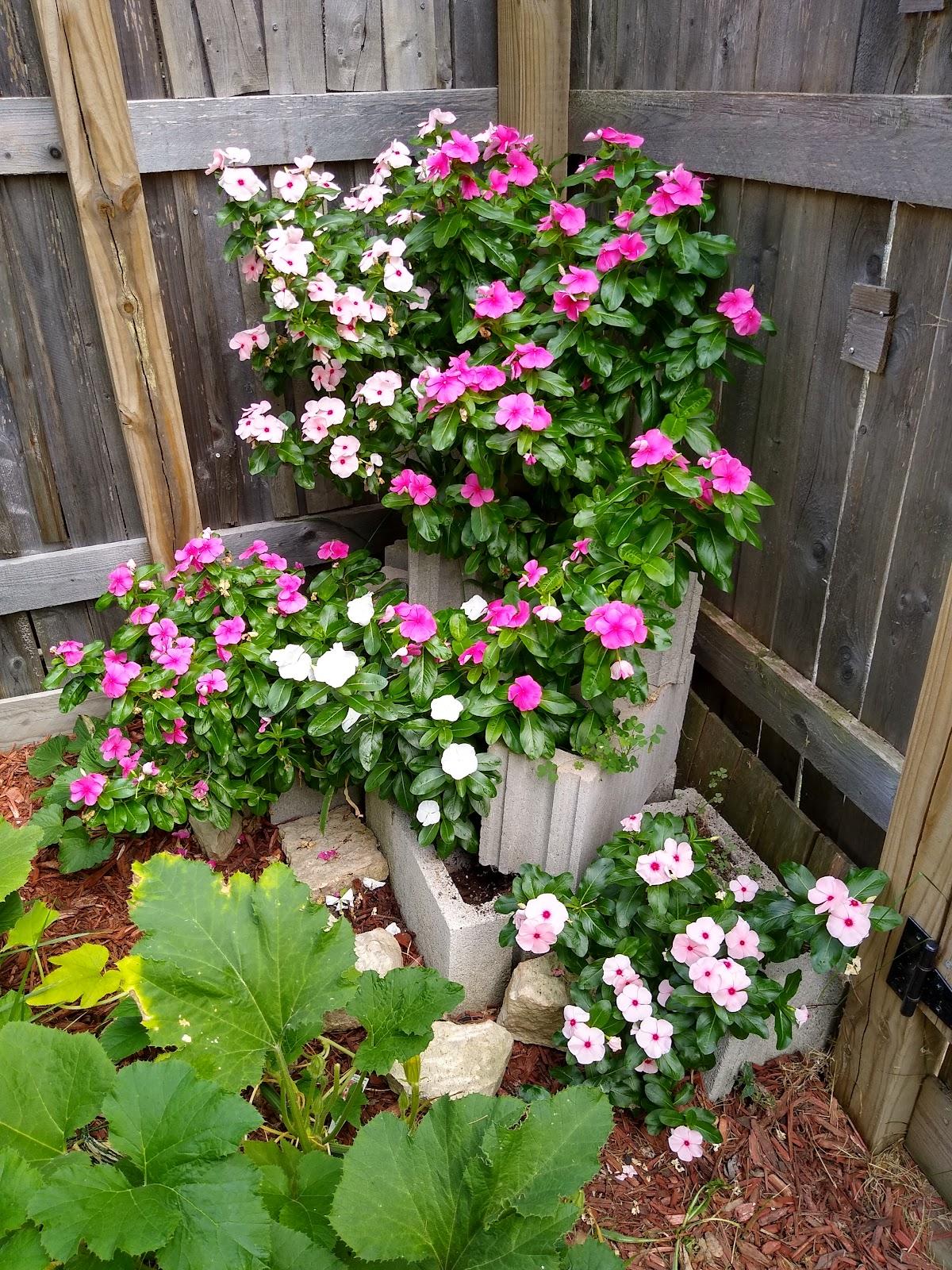 cinder block garden picture