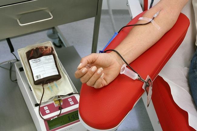 Image result for transfusi darah