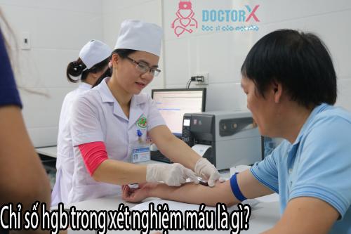 Chuyên gia giải đáp: Nhóm máu B có hiếm không?  - Ảnh 1