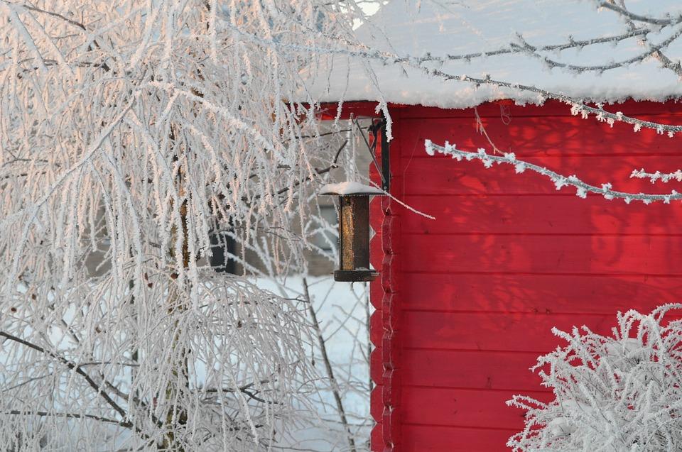 winter-1140777_960_720.jpg
