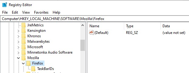 The Firefox directory in the Registry Editor