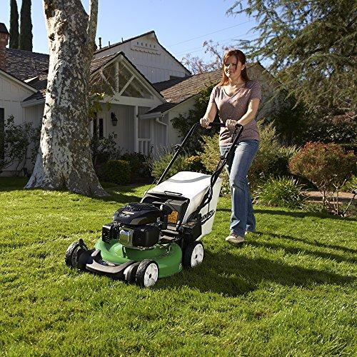 Lawn-Boy 17734 Review - Gas Powered Lawn Mower EasyLawnMowing