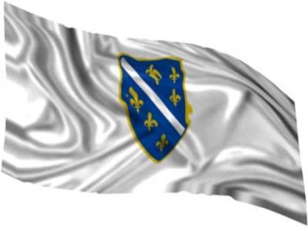 Image result for zastava BiH sa ljiljanima