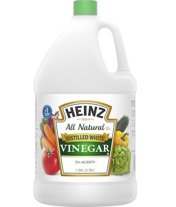 a gallon bottle of white vinegar, used for cooking & cleaning