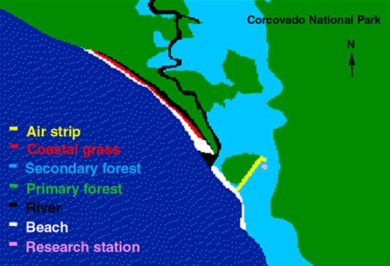 Habitat map depicting the different habitats surrounding the Sirena Station.