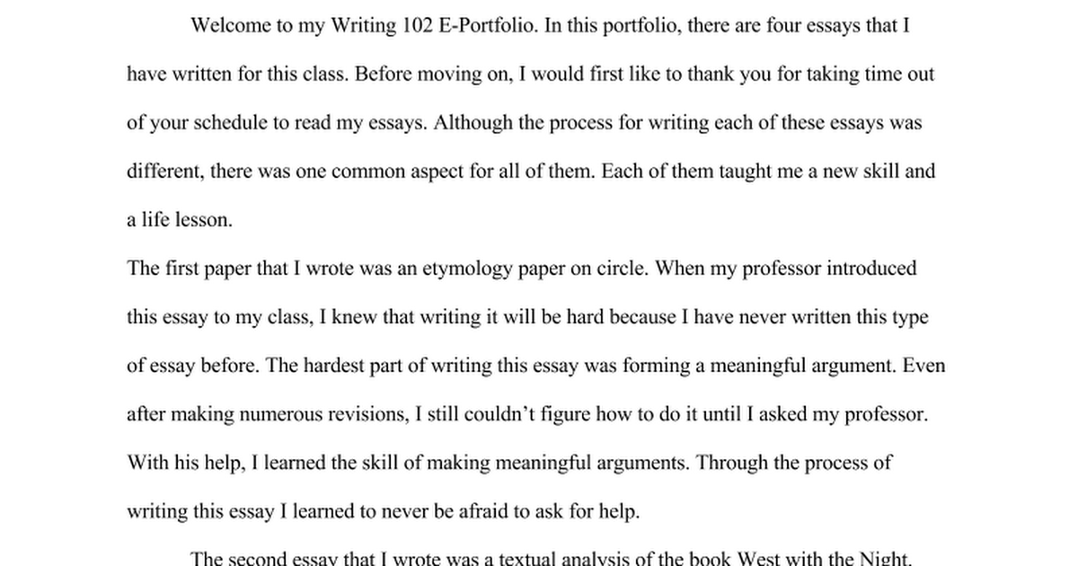 making inferences essay - Portfolio Essay Example