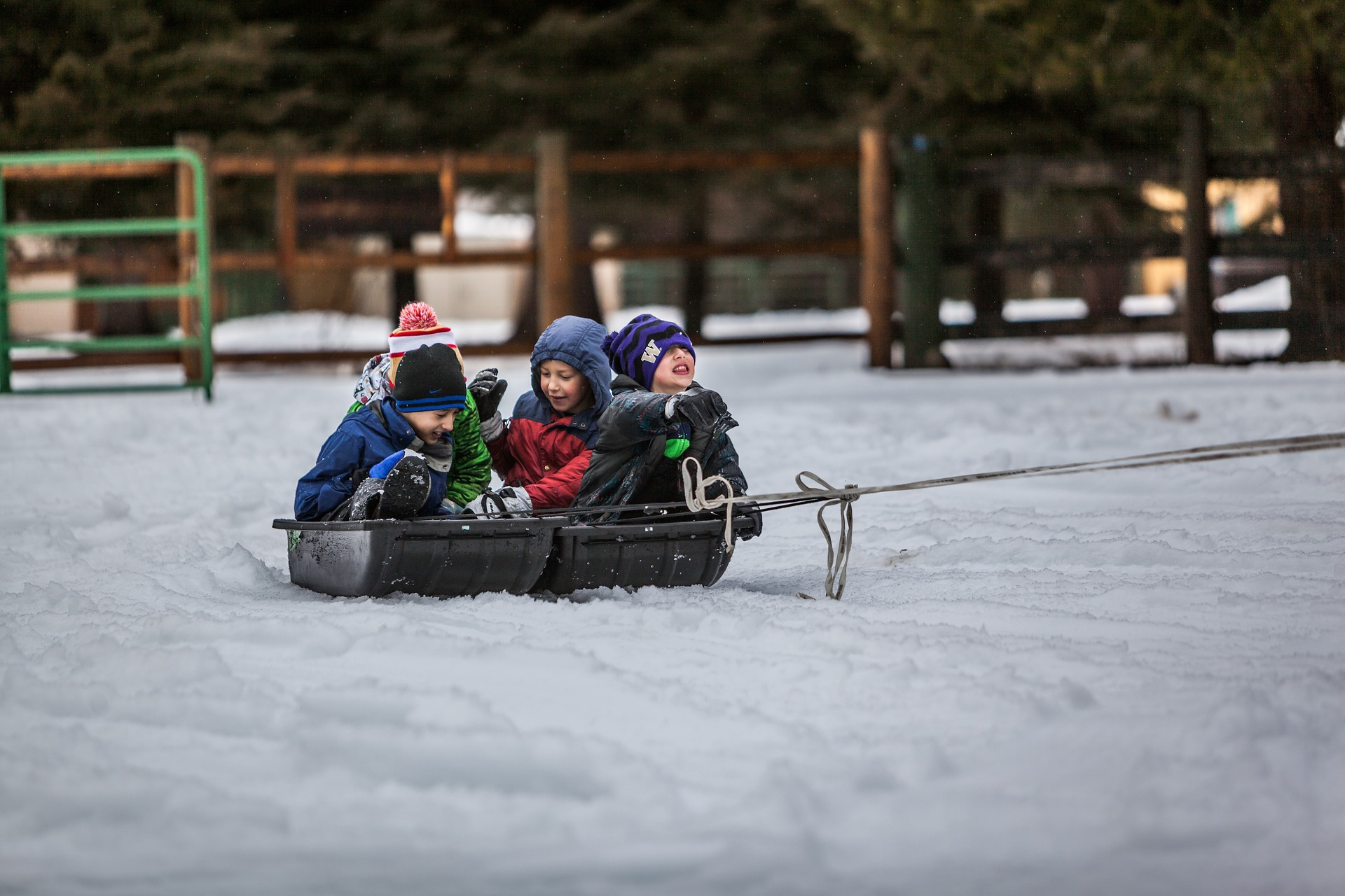Kids being pulled on a sled