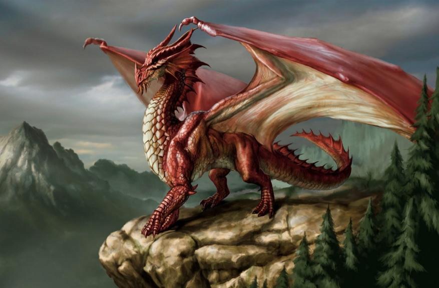Red_Eurpean_Dragon.jpg