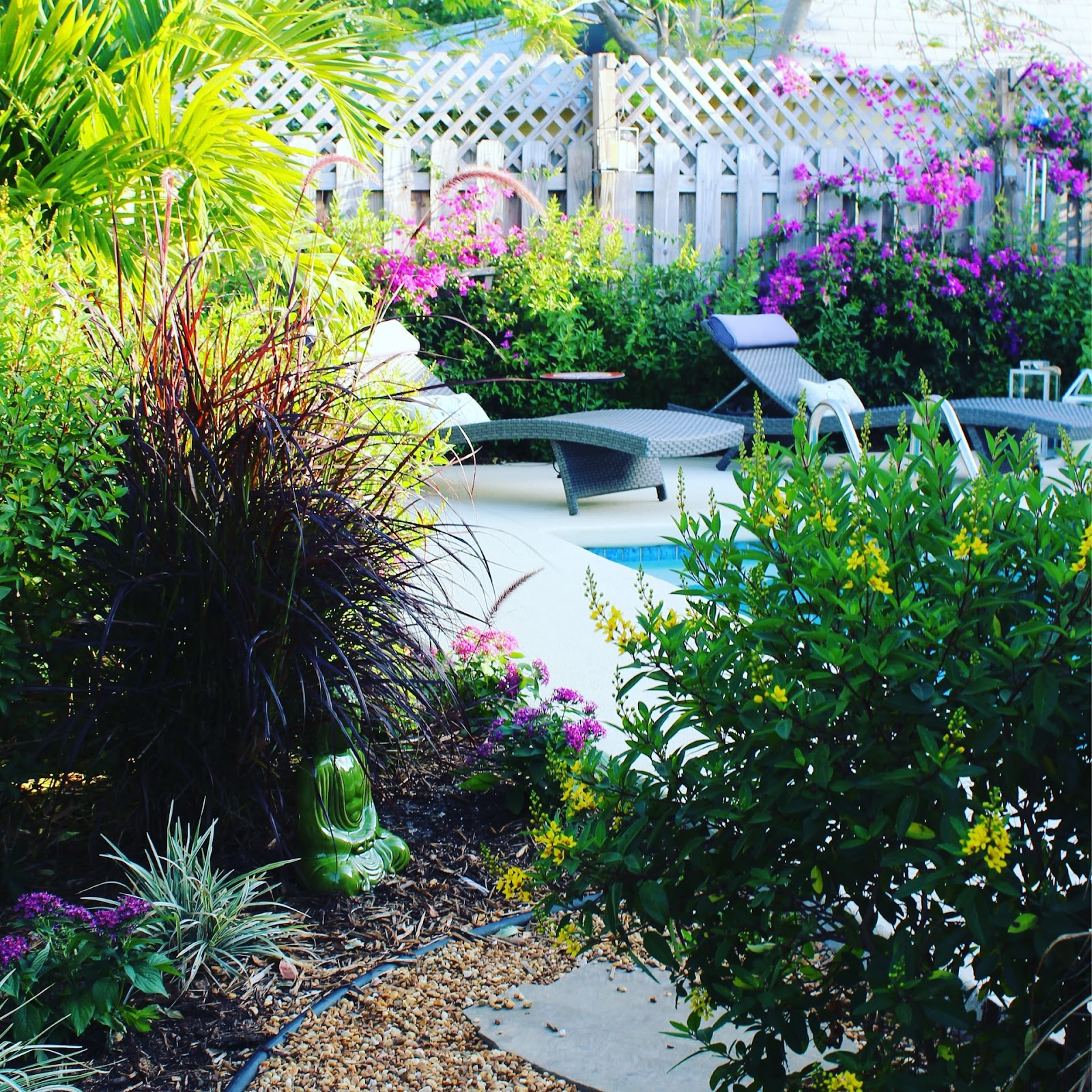 A Guide - Making Your Backyard Safer & More Private