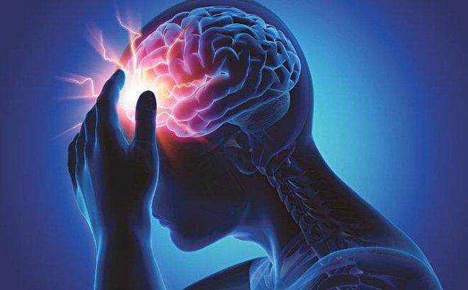 Ginkgo Biloba giúp tăng cường trí nhớ và sự tập trung