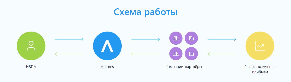 Обзор инвестиционной платформы Antares: условия сотрудничества и отзывы клиентов