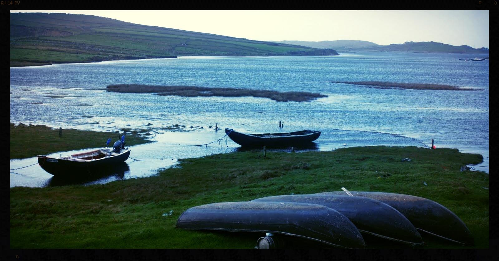 Currach Boats.jpg