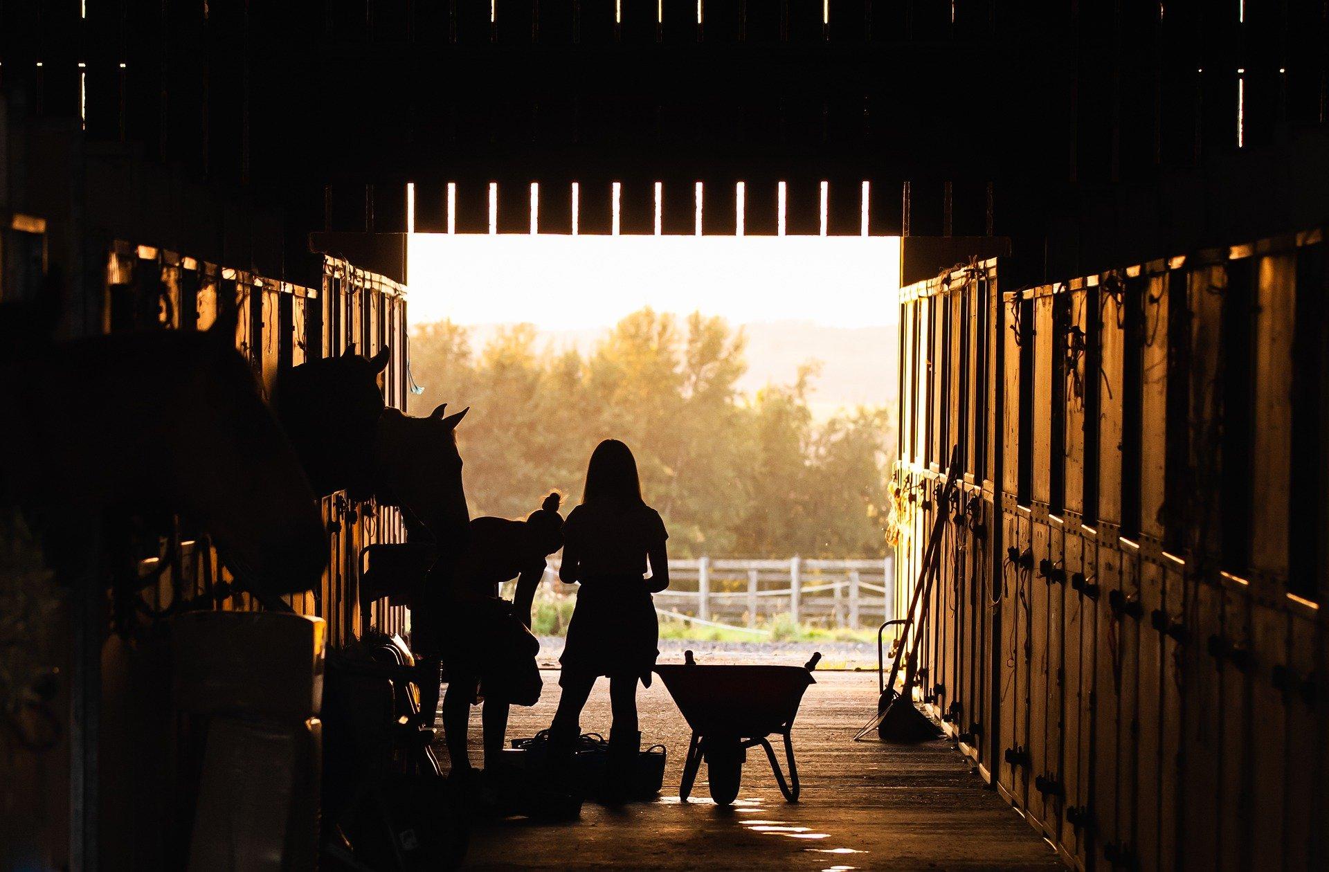 2 equestrians do barn chores as the sun sets
