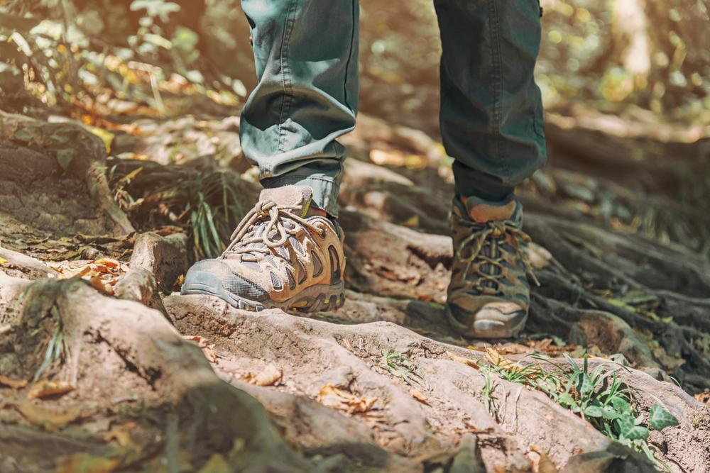 Unrecognizable hiker woman crossing tree roots in autumn forest, view of legs in trekking boots.